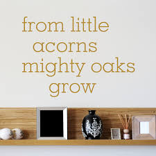 from little acorns mighty oaks grow quote wall sticker world of from little acorns mighty oaks grow quote wall sticker world of wall stickers