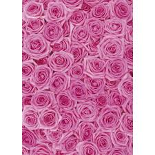 wrapping paper pink roses wrapping paper pen to paper