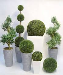 Indoor Trees For The Home by Decorative Trees For The Home Home Design Inspirations