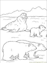 artic coloring pages print c0lor 2nd grade