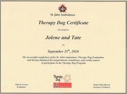 Participation Certificate Templates Free Download Service Dog Certification Free Stevejobssecretsoflife Org