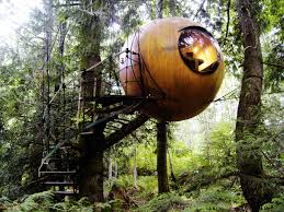 Best Treehouse These 15 Best Treehouses In The World Are Surreal