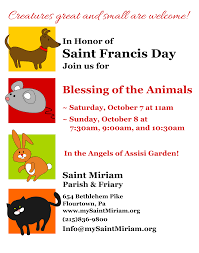 spirit halloween joliet newsletter saint miriam parish