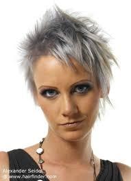 salt and pepper hair colour short haircut with a metallic gray hair color
