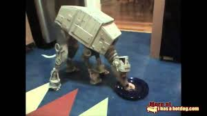 boxer halloween costume for dog at at dog star wars youtube