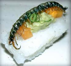 insecte cuisine insect sushi or creepy crawly cuisine glamroz
