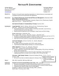 Child Care Resume Cv Objective Examples Uk