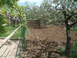 building plot of land u2013 lavita property italia