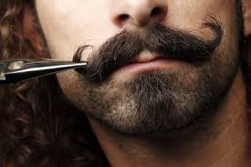 15 different types of beards worth giving a shot 2017