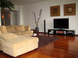 top living room with flat screen tv design ideas modern classy