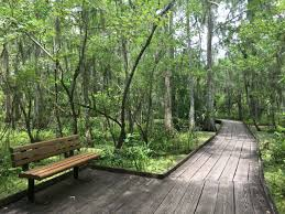 Louisiana Natural Attractions images The 8 most incredible natural attractions in louisiana that jpg