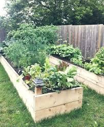 Raised Gardens Ideas How To Design Garden Beds More Design Ideas In Backyard Raised