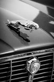1973 jaguar xj6 sedan ornament grille emblem 3306bw