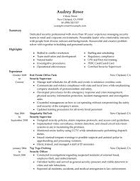 resume sample best and professional templates