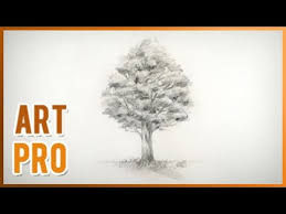 how to draw a realistic tree step by step