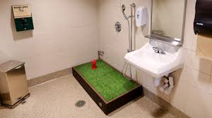 Bathroom Design Chicago by Midway Airport Opens Pet Bathroom Chicago Tribune