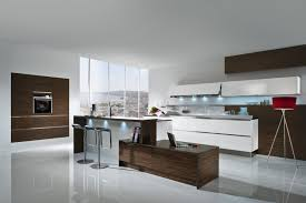 best luxury kitchen cabinets for modern kitchens southbaynorton