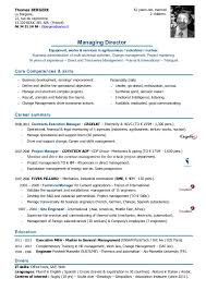 French Resume Examples by Cv Book Iae Aix Talent Provider For Executive Managers English Version