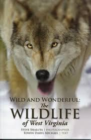 West Virginia wildlife images Wild and wonderful the wildlife of west virginia jpg