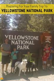 106 best yellowstone national park with images on