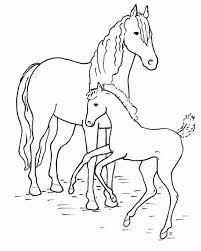 28 coloring pages of horses free printable horse coloring pages