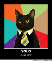 Cheezburger Meme Builder - yolo business cat meme generator posterizer yolo pinterest