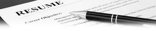 professional resume service reviews resume review