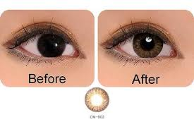 Light Brown Contact Lenses Contacts For Brown Eyes Honey Amber Are Found In Every Pair Of