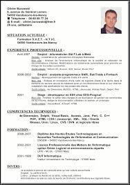 Resume In English Sample by 28 Cv In Resume Self Education Learn Free Excel 2013 For