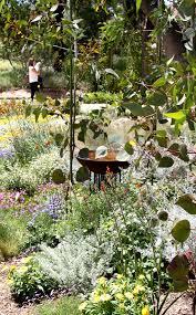 wollongong botanic gardens adelaide botanic garden the australian native garden is a south