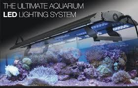 high output led lights aqua lumi high output led light unit spotted in uk via iquatics gear