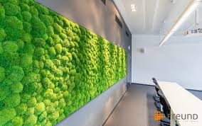 indoor green wall preserved plant modular panel greenhill