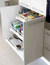kitchen cabinet spice organizers home design ideas