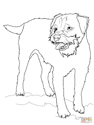 100 dog bone coloring pages cartoon vector illustration