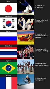 Martial Arts Memes - martial arts around the world funny