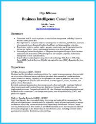 example resume pdf business intelligence resume sample sample resume and free business intelligence resume sample seafood sales sample resume science essay examples hr management business intelligence analyst