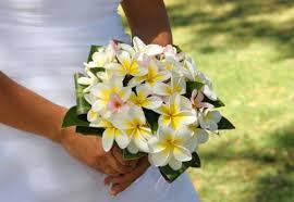 Bridal Bouquet Ideas Glorious Yellow Bridal Bouquet Ideas U0026 Pictures