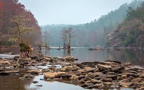 Oklahoma forest images Beavers bend state park oklahoma forest nature river tree hd wallpaper jpg