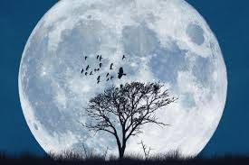 when is the next full moon date for november u0027s frost moon and the