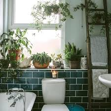 themed bathroom ideas jungle bathroom decor la bathroom jungle themed bathroom ideas