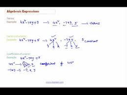 adding algebraic expression cbse class 8th math videos and notes