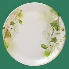 serving plate serving plate white glass plate manufacturer from new delhi