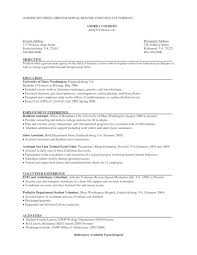 Resume For Test Lead Objective On Resume For Retail Examples 2017 Store Help Fa Peppapp