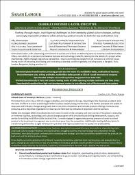 Executive Resume Example by C Level Executive Resume Example Distinctive Documents