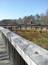 Clemson Botanical Garden by South Carolina Botanical Gardens Clemson Top Tips Before You Go