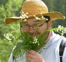 cuisine plantes sauvages délicieuses ces mauvaises herbes anab association nature