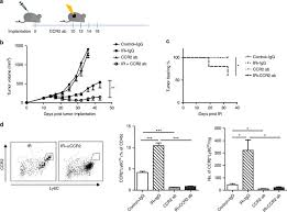 host sting dependent mdsc mobilization drives extrinsic radiation