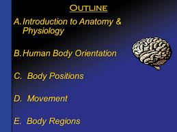 Anatomy And Physiology Human Body Chapter 1 Overview Of The Body Ppt Video Online Download