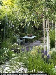 best small flowering trees australia best small garden trees
