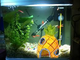 spongebob squarepants pineapple house aquarium fish